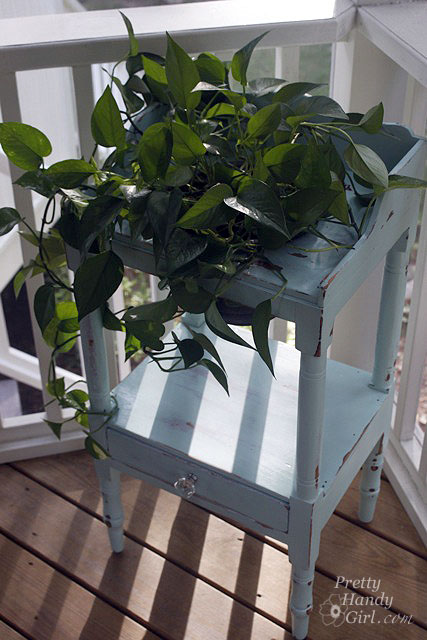 paint-wash-stand-plant_in_dry_sink