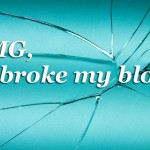 I Broke My Blog and WordPress Plugins You Shouldn't Blog Without
