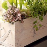 White-washed Window Box from a Wine Crate