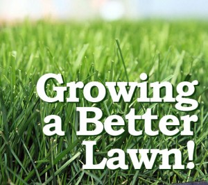 growing_a_better_lawn