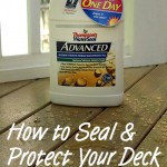 How to Seal and Protect Your Deck