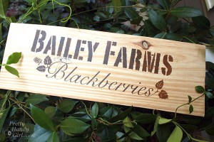 bailey_farm_sign_new