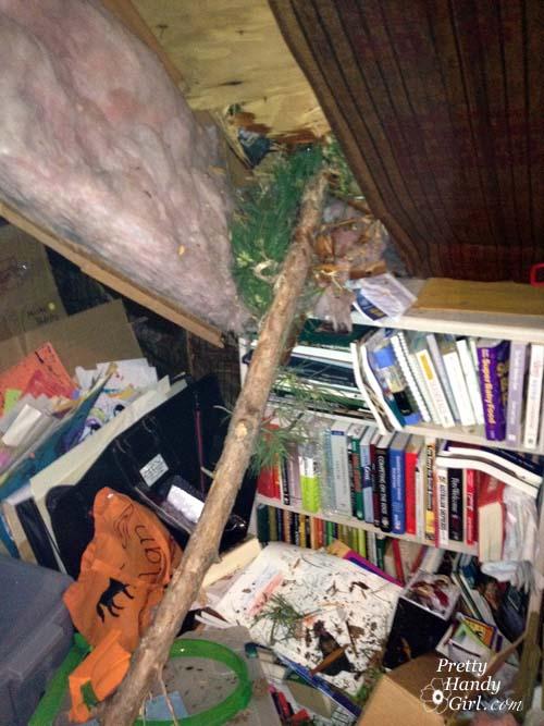 branch_through_attic