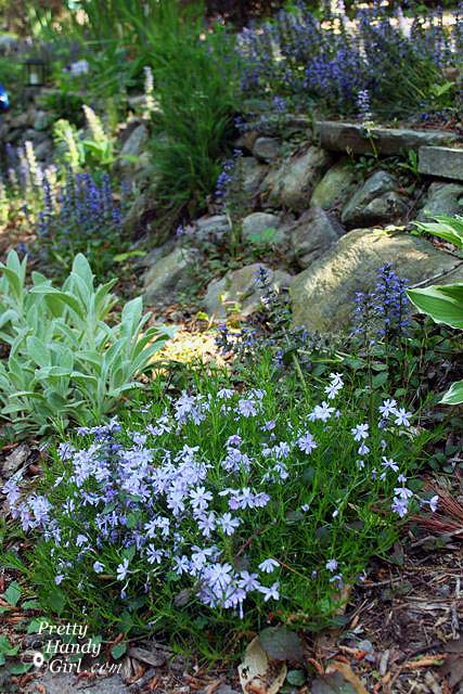 stone_wall_blooming