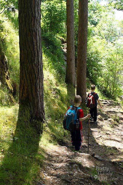 boys_on_trail
