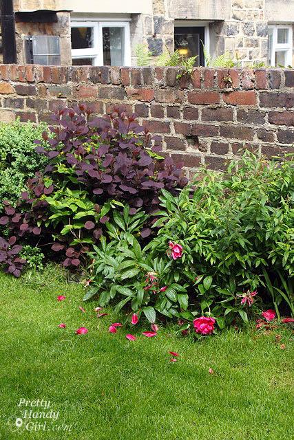 courtyard_wall