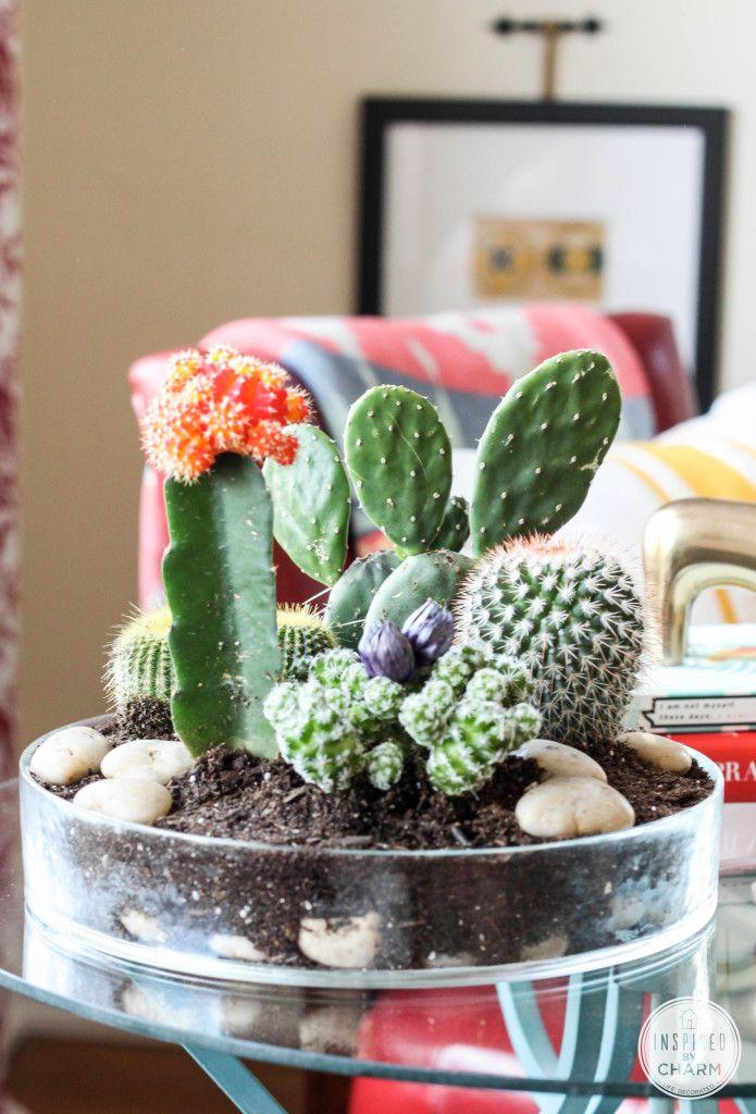 Marvelous Indoor Cactus Garden Ideas Part - 11: Tabletop Cactus Garden