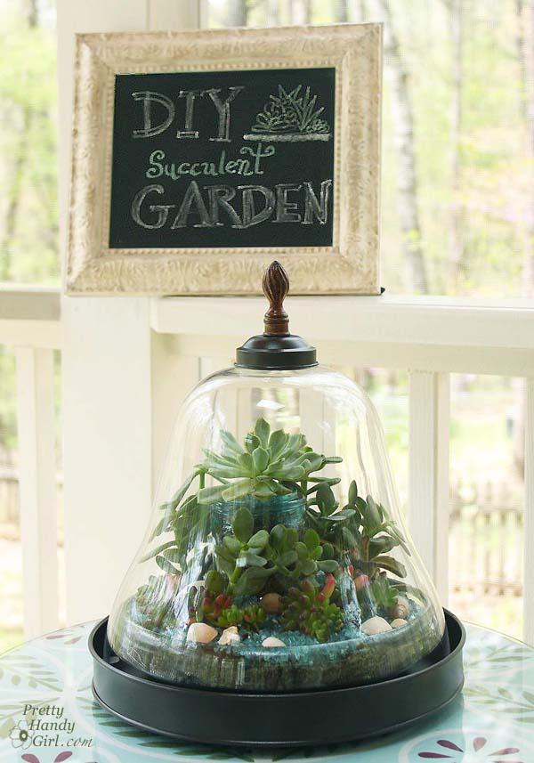 DIY_succulent_garden