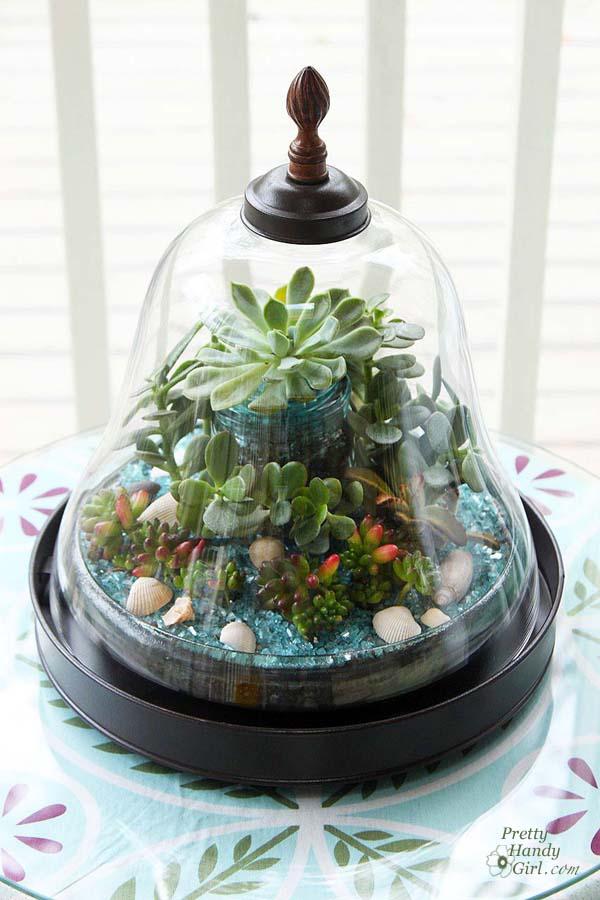 Succulent_garden_in_bell_terrarium_2