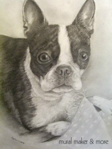 boston_terrier_commissioned_portrait