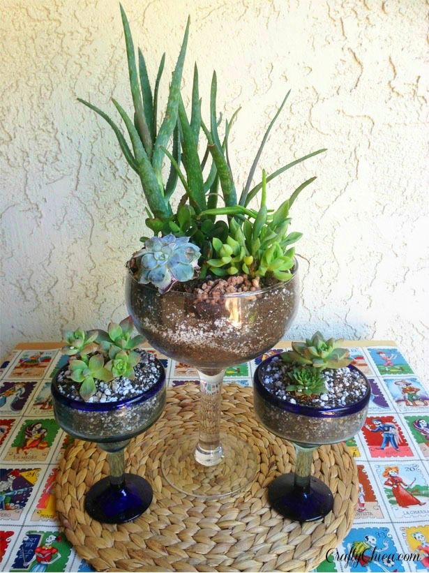Cactus Garden Ideas saveemail Margarita Glass Planters