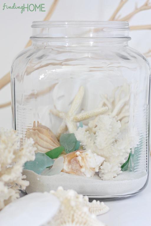 finding_home_beach_terrarium