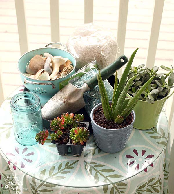 materials_for_succulent_terrarium