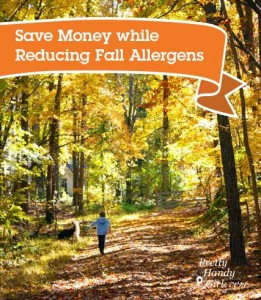 save_money_reduce_fall_allergens