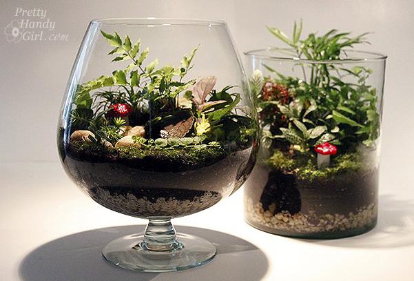 Make Your Own Terrariums