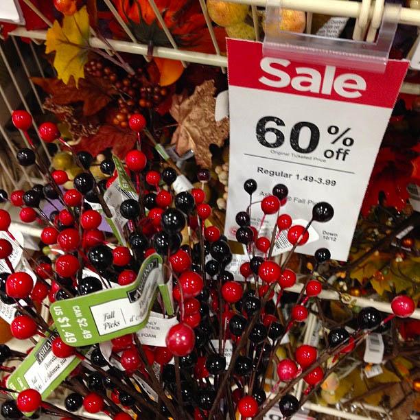 fall-berries