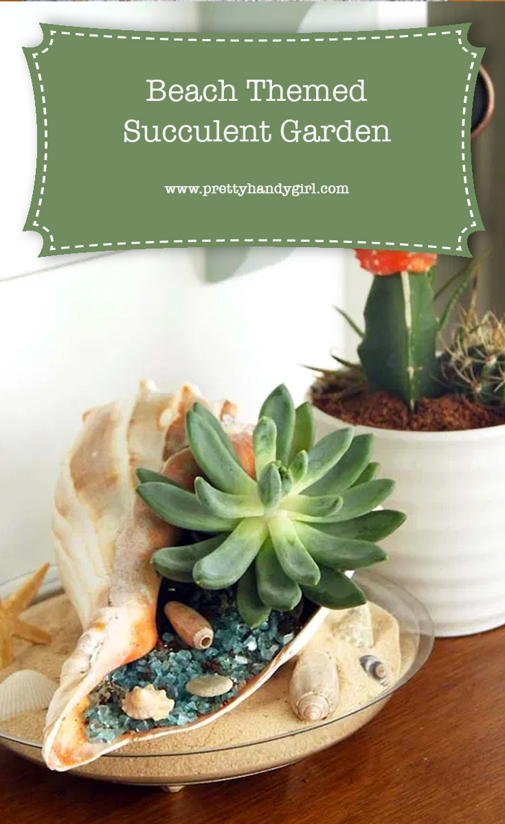 DIY Beach-Themed Succulent Garden | Pretty Handy Girl