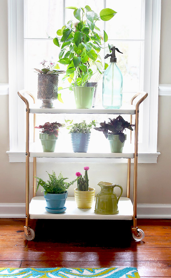 Upcycled Plant Cart Saved From Quot Above The Rim Quot Pretty