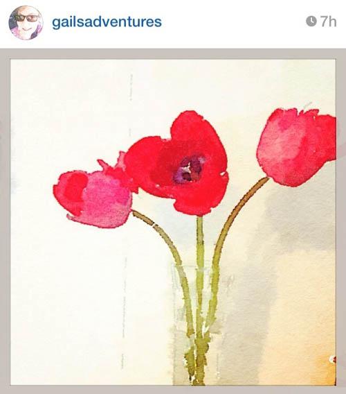 gailsadventures_tulips