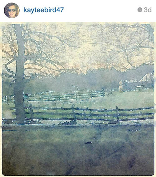 kayteebird47_countryside