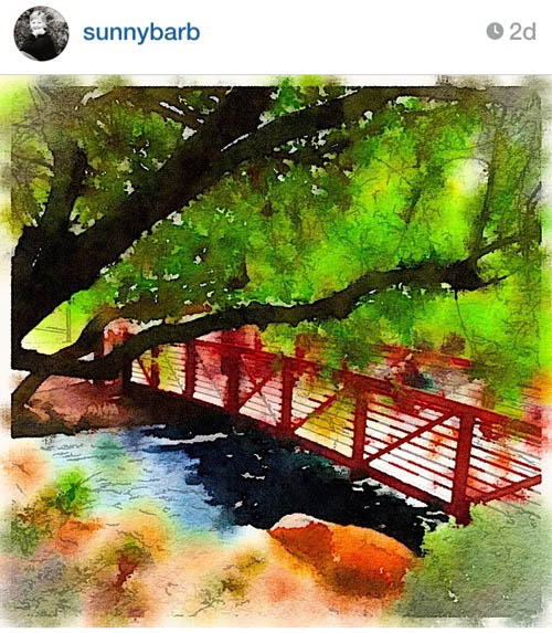 sunnybarb_bridge