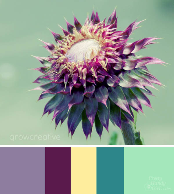 How to Choose Colors in Your Home | Pretty Handy Girl