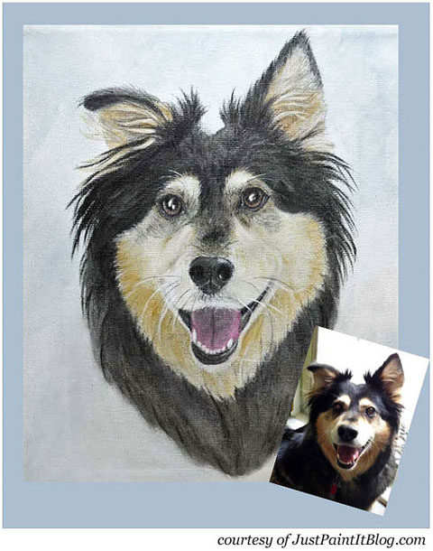 Buddy Handy Dog  | English Shepherd Portrait