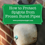 protect frozen pipes from bursting
