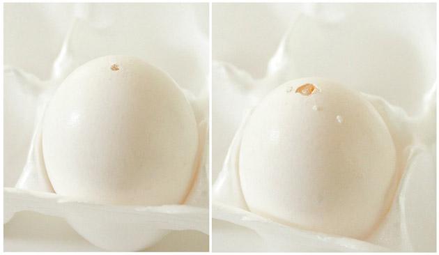 Faux Robin's Egg Spring Nest | Pretty Handy Girl