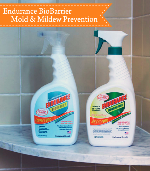 Mold & Mildew Free Shower for 4 months | Pretty Handy Girl