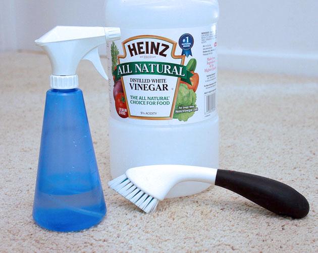 10 DIY Frugal Cleaners   Pretty Handy Girl