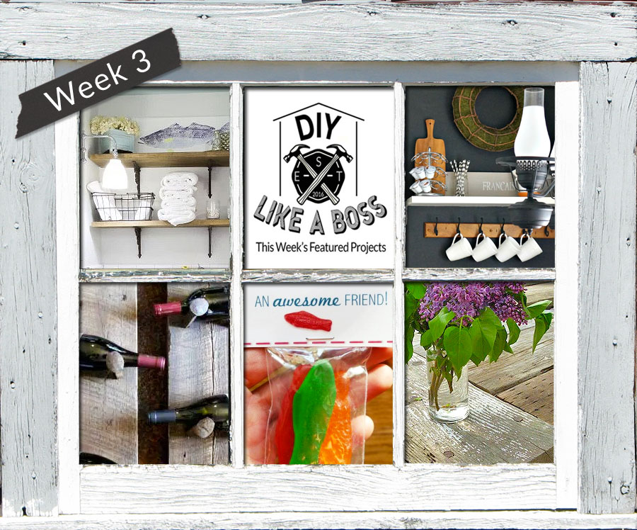 #DIYLikeaBoss Weekly Features - Week 3