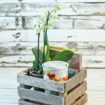 Make a Driftwood Gift Crate
