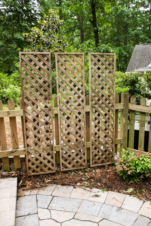 Create a living wall lattice privacy screen pretty handy for Lattice panel privacy screen