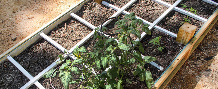 How to Build a Square Foot Gardening Grid that Won't Rot | Pretty Handy Girl