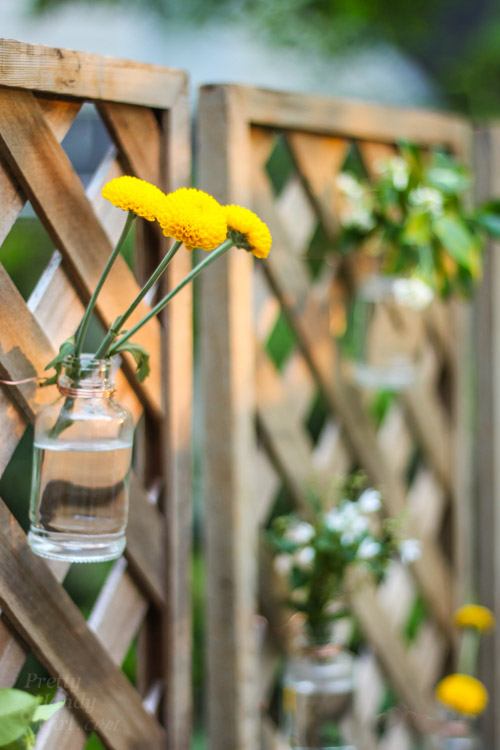 Create a Living Wall Lattice Privacy Screen | Pretty Handy Girl