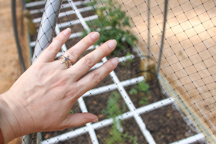 hand-on-wildlife-netting