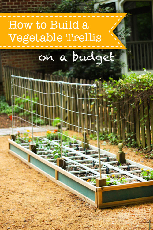 Vegetable Trellis Ideas Part - 26: How To Build A Vegetable Trellis On A Budget
