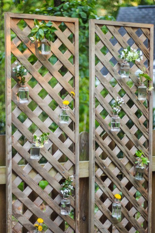 Create a living wall lattice privacy screen pretty handy for Cheap patio privacy ideas