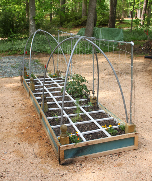 wildlife-netting-over-planter-bed