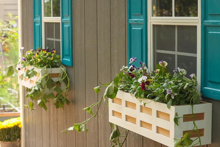 How to Build Lattice Window Boxes