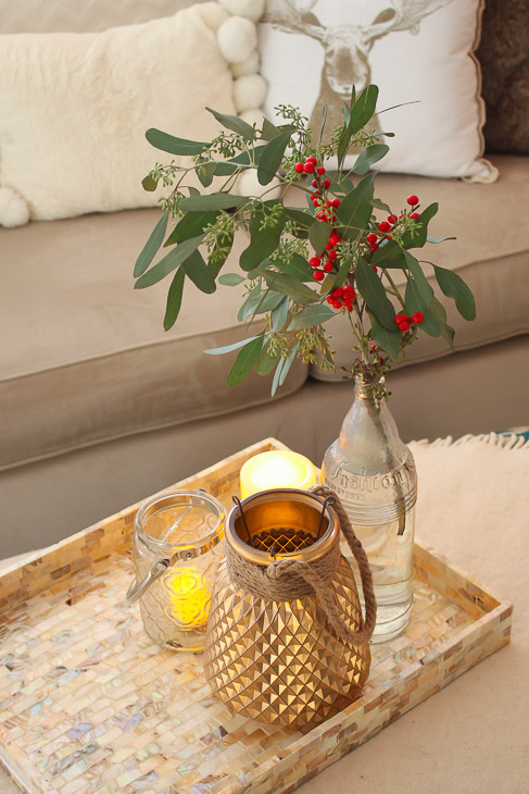 seeded-eucalyptus-candles-at-home-tray