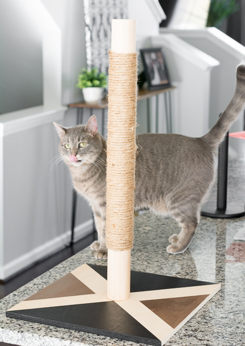 Modern diy cat scratcher post pretty handy girl - Modern cat scratcher ...