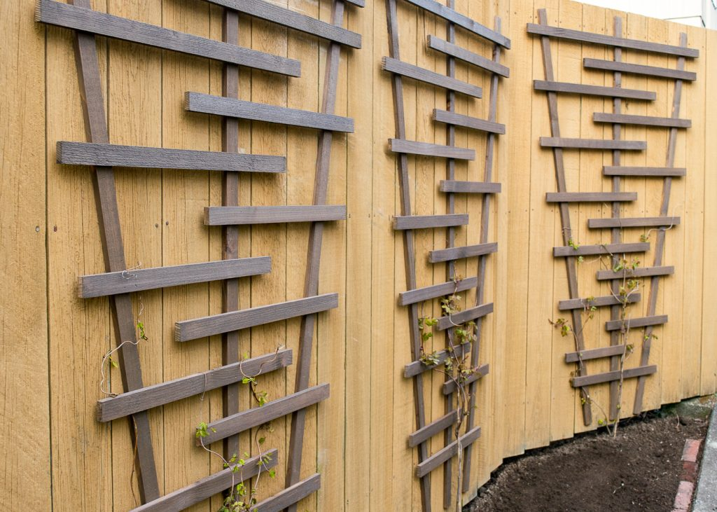There are so many ways to create your own fence trellis! You can find the plans for this one at The Handyman's Daughter.