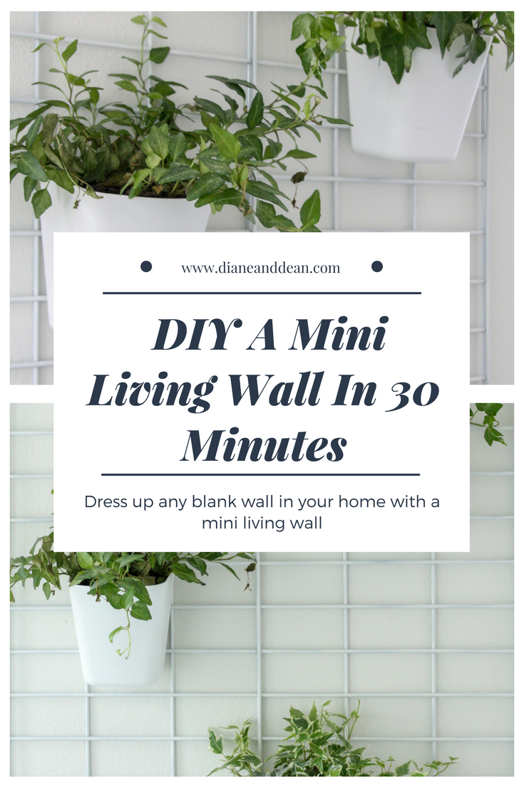 Captivating DIY Living Wall Planter Tutorial