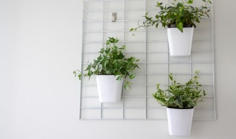 using a grid to hang indoor plants