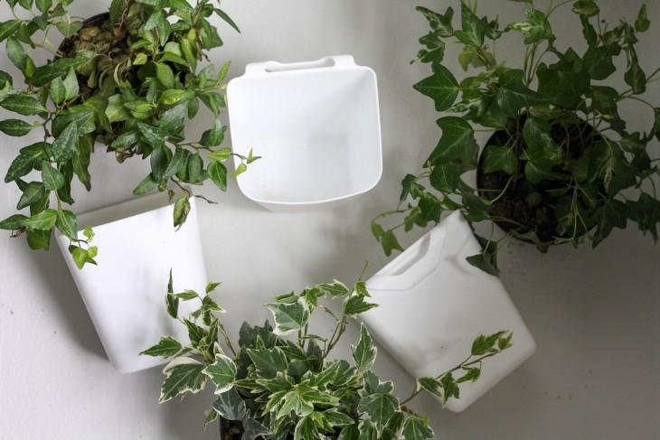 ivy plants and Ikea plastic bins