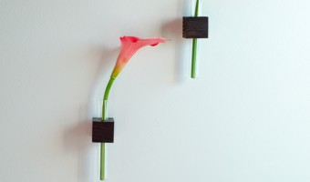 DIY Wall Mounted Test Tube Vases