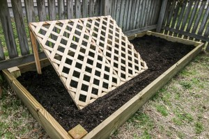 How to Build a Raised Garden Bed with a Cucumber Trellis
