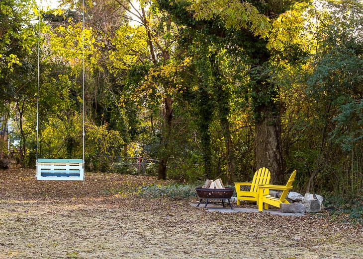fall colored trees in saving etta backyard